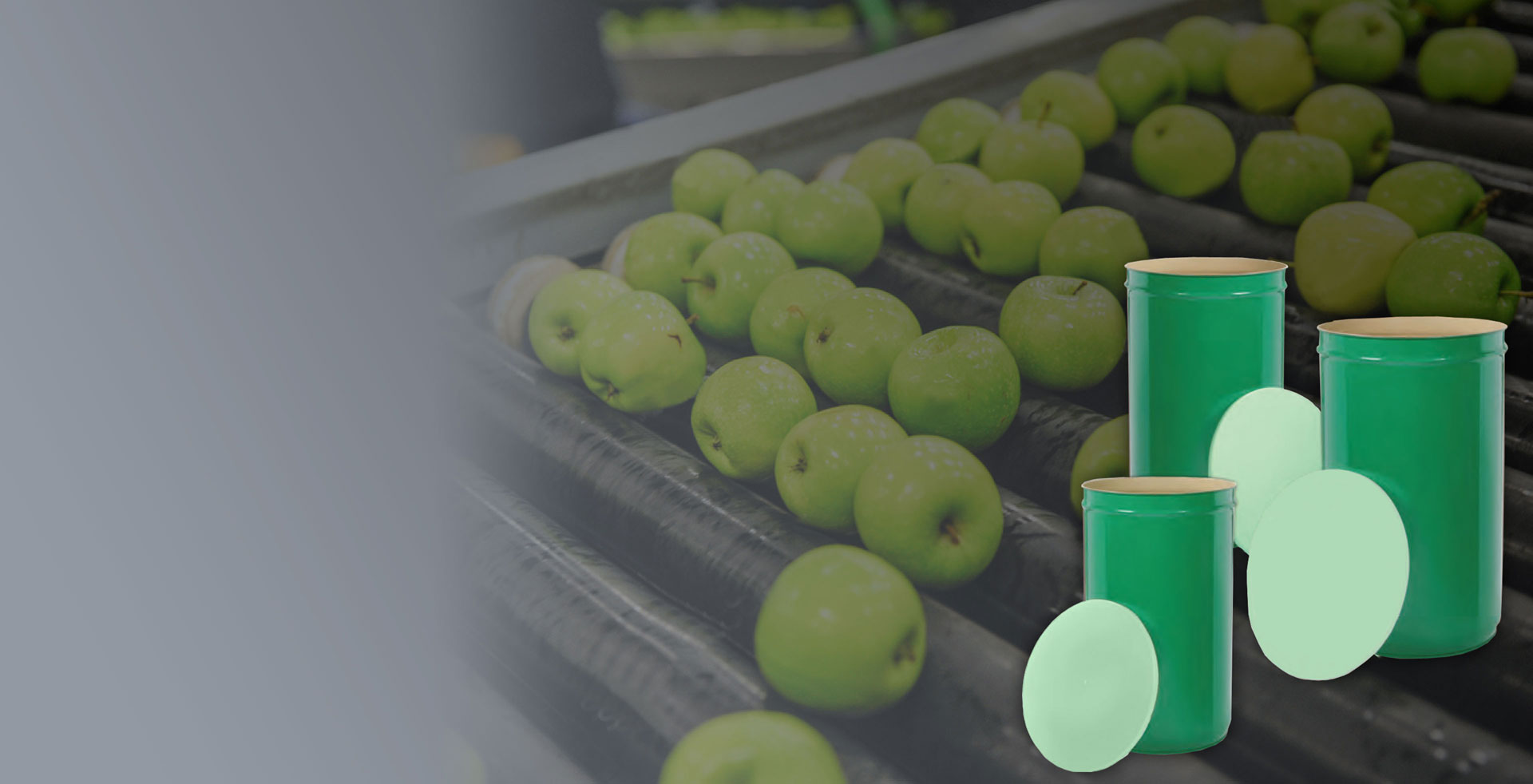 D.R. Plast - Coperchi per fusti - Frutta